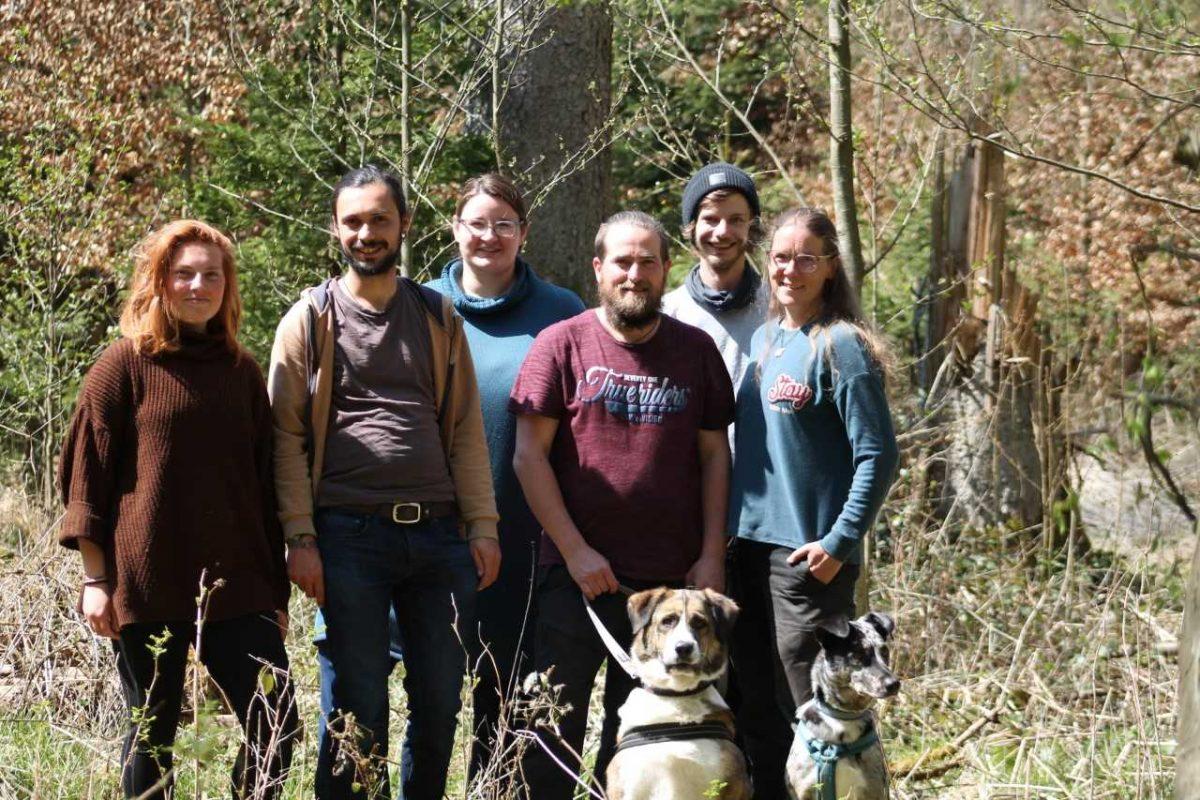 Waldprojekt: das neue Team